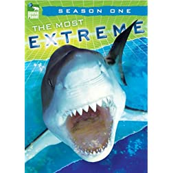Most Extreme - Season 1