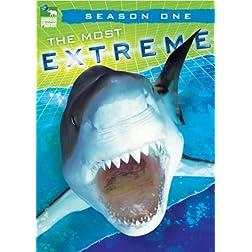 Most Extreme - Season 1