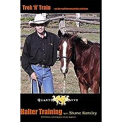 Catching & Halter Training