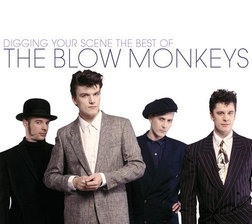 Digging Your Scene: The Best of The Blow Monkeys