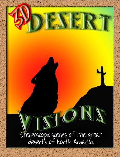 3D Desert Visions