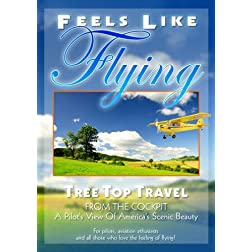 FEELS LIKE FLYING!: Tree Top Travel