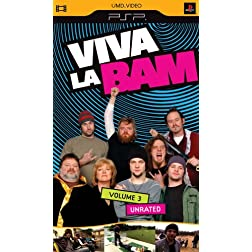 Viva La Bam, Vol. 3