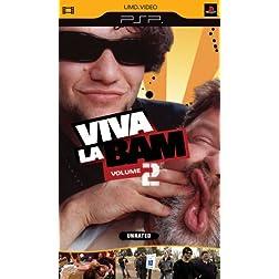 Viva La Bam, Vol. 2