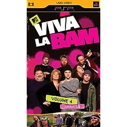 Viva La Bam, Vol. 4