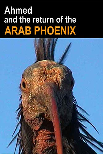 Ahmed and the Return of the Arab Phoenix