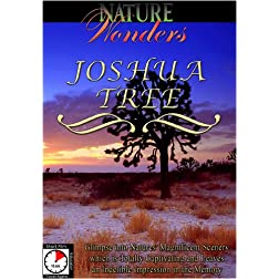 Nature Wonders  JOSHUA TREE U.S.A.