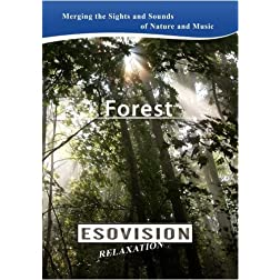 ESOVISION Relaxation  FOREST