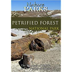 Nature Parks  PETRIFIED FOREST Arizona