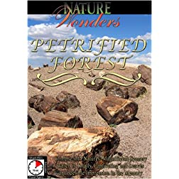 Nature Wonders  PETRIFIED FOREST U.S.A.