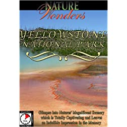 Nature Wonders  YELLOWSTONE NATIONAL PARK USA