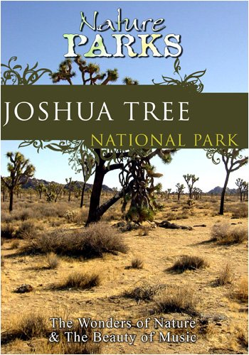 Nature Parks  JOSHUA TREE California