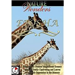 Nature Wonders  ETOSHA Namibia