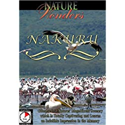 Nature Wonders  NAKURU Kenya