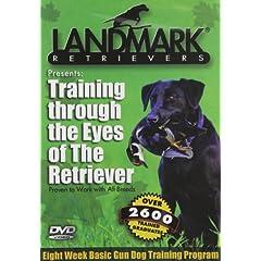 Training Through the Eyes of the Retriever