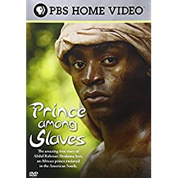 Prince Among Slaves