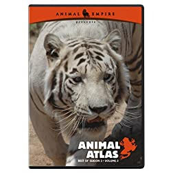 Animal Atlas: Best of Season 3, Volume III
