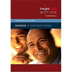Business 1 - Corporate World