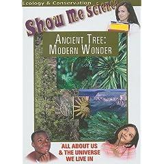 Ancient Tree: Modern Wonder