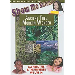 Ancient Tree: Modern Wonder