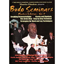 Budo seminars Vol. 4