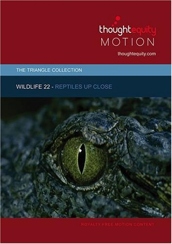 Wildlife 22 - Reptiles Up Close (Royalty Free Motion Video)