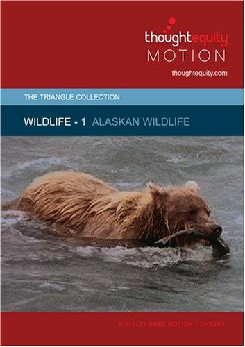 Wildlife 1 - Alaskan Wildlife (Royalty Free Motion Video)