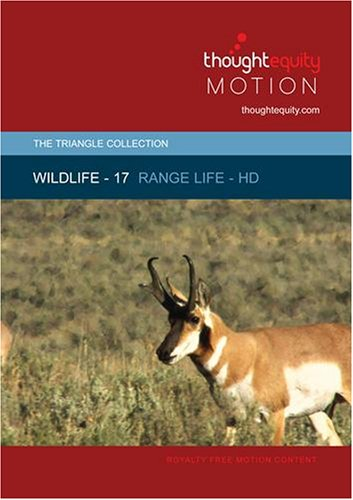 Wildlife 17 - Range Life - [HD] (Royalty Free Motion Video)