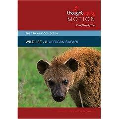 Wildlife 8 - African Safari (Royalty Free Motion Video)