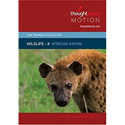 Wildlife 8 - African Safari