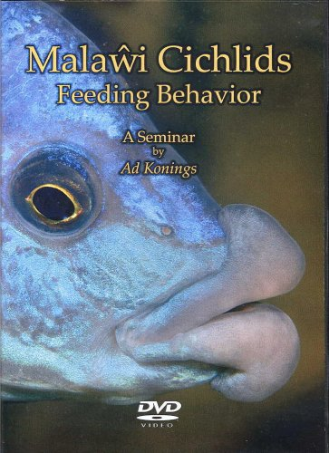 Malawi Cichlids Feeding Behavior, A Seminar by Ad Konings
