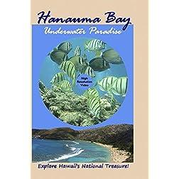 Hanauma Bay: Underwater Paradise