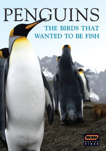 Wgbh Boston Specials: Penguins - Birds Who Wanted