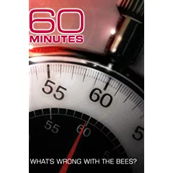 60 Minutes - What's Wrong With The Bees? (February 24, 2008)