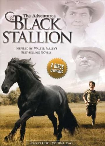 Adventures of the Black Stallion: Season One 2