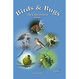 Birds & Bugs