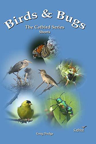 Birds & Bugs