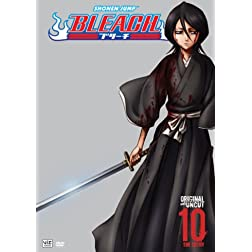 Bleach, Volume 10: The Entry
