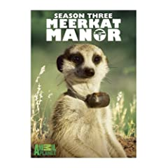 Meerkat Manor, Season 3