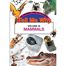 MAMMALS
