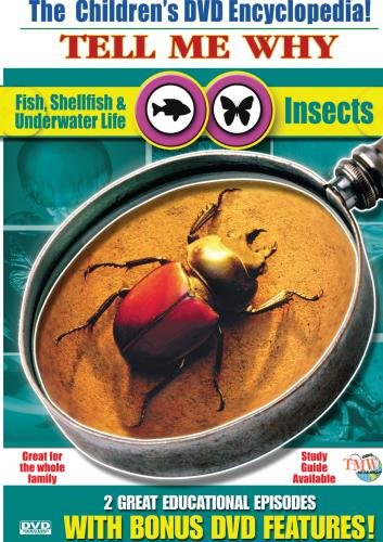 Insects & Fish, Shellfish, Underwater Life