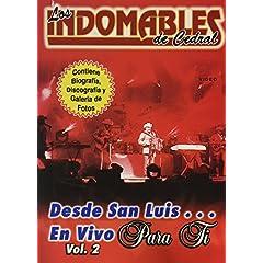 Desde San Luis en Vivo, Vol. 2