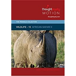 Wildlife 15 - African Safari II