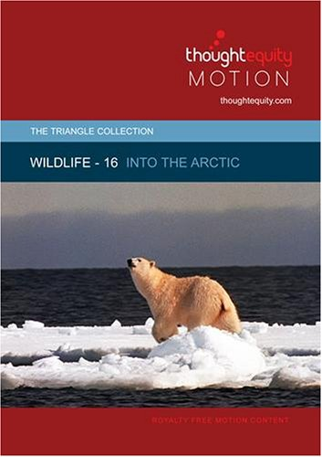 Wildlife 16 - Into the Arctic