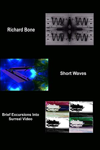 Short Waves: 12 Brief Excursions Into Surreal Video