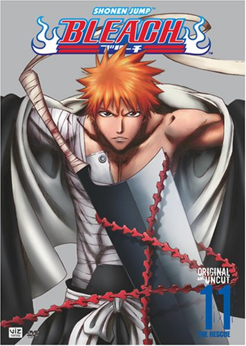 Bleach Vol. 11