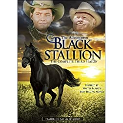 The Adventures of the Black Stallion : The Complete Third Season