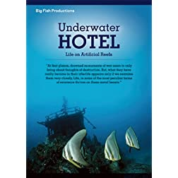 Underwater Hotel: Life On Artificial Reefs