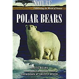 Nature: Polar Bears