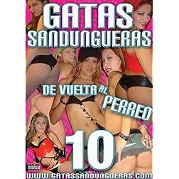 Gatas Sandungueras Vol 10 De Vuelta al Perreo Reggaeton